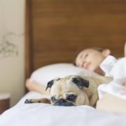 besseren Schlaf